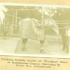 Playground Circus II (01576)