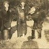 1931 Playground Circus III (01637)