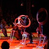 Entertainment; Shows; Cirkus Dannebrog;