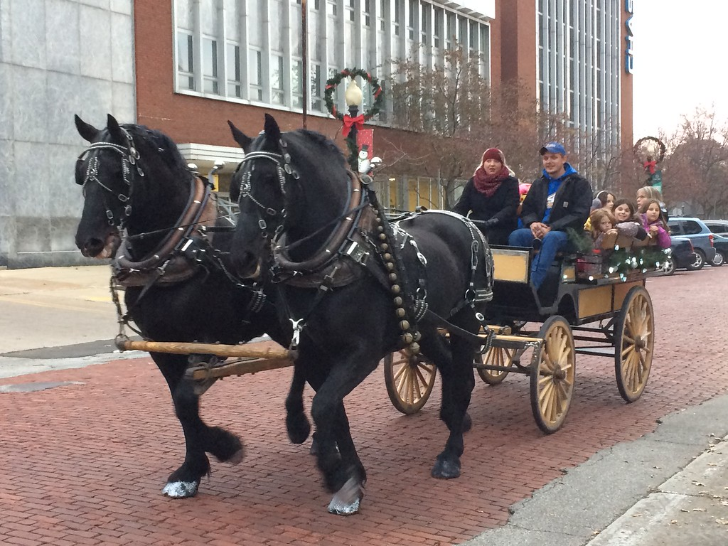 . During the Downtown Painesville Organization\'s Holiday Open House on Nov. 14, attendees were treated to carriage rides, free food and music, and a visit from Santa. The event attracted hundreds of people, officially kicking off the city\'s holiday season with the annual tree lighting ceremony. (Chad Felton � The News-Herald)