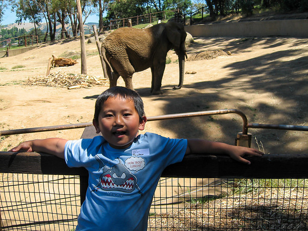 2006_Zoo