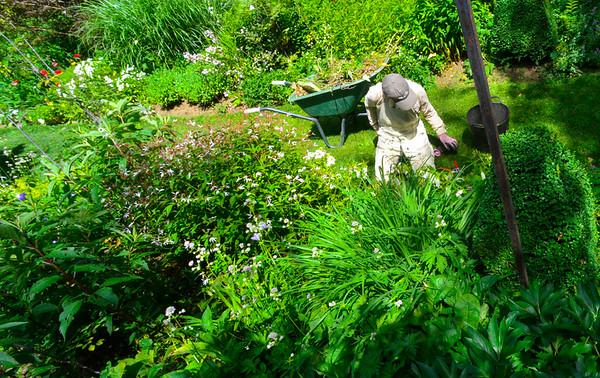 Garden tour - 063016