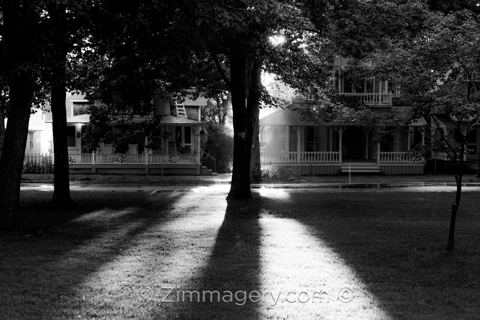 Shadows, Martha's Vineyard