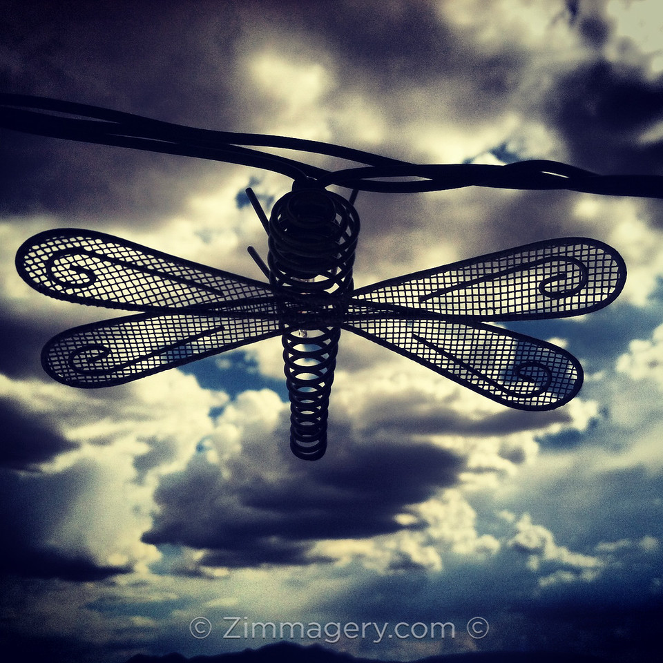 Metal Mosquito, New Mexico