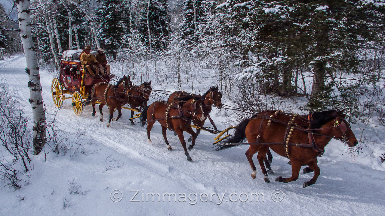 W.F. Stagecoach, Jackson, Wyoming