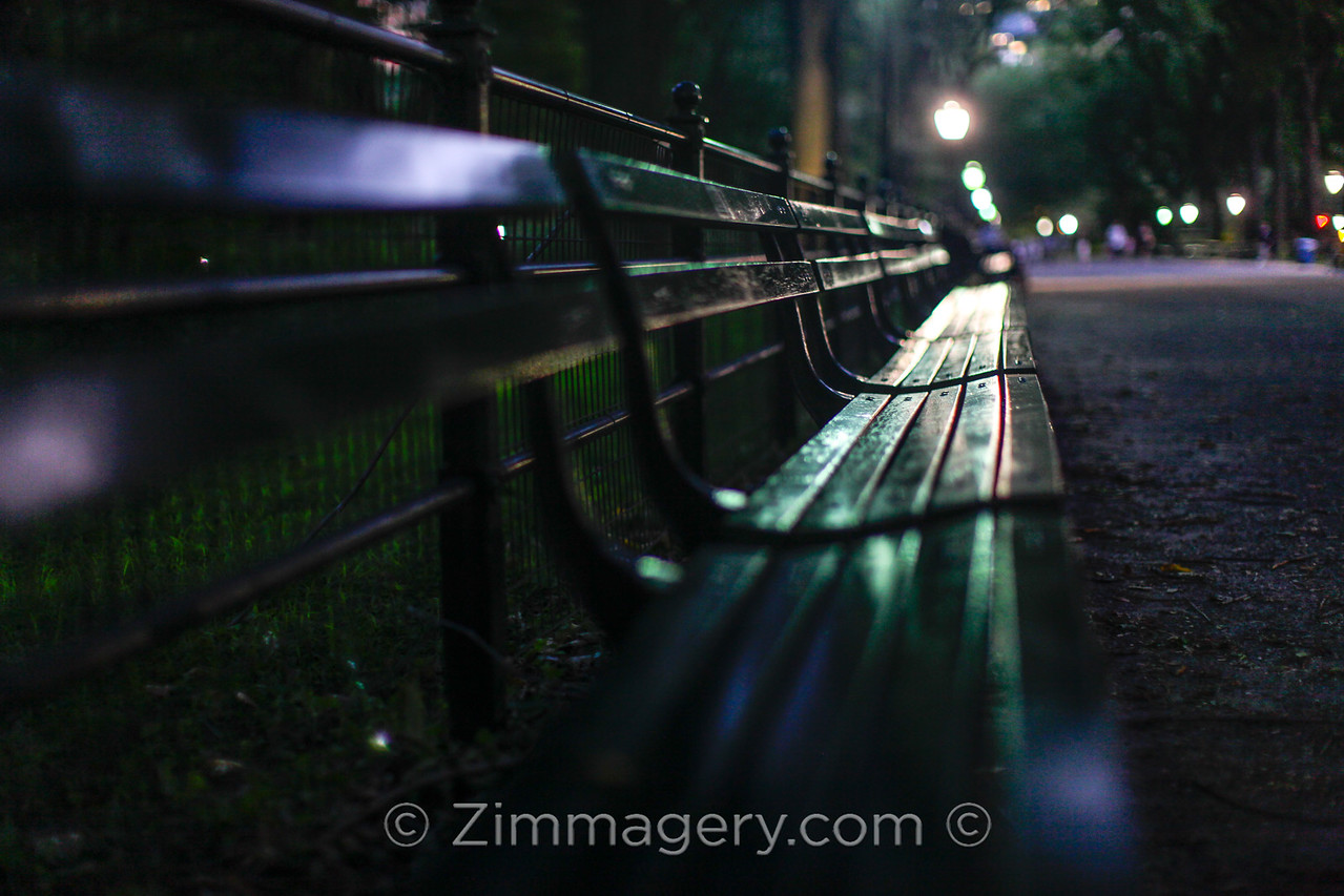 Central Park Bench, NYC