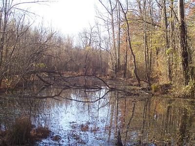Conestee Wildlife Park-112709