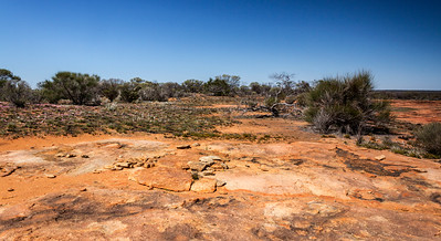 Low Granite Hill Charles Darwin reserve WA - 2390