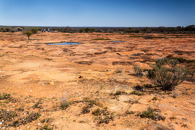 Low Granite Hill Charles Darwin reserve WA - 2419
