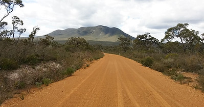 Toolbrunup Rd. Stirling Ranges, South Western Australia  - 114817