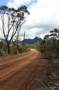 Toolbrunup Rd. Stirling Ranges - South Western Australia - 113654