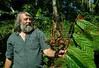 "Roland Müller shows a cacao-tree infected by ""bruxa"" prague, fazenda Vera Cruz, cooperativa Cabruca, Una, Bahia, Brazil, August 6, 2009. (Austral Foto/Renzo Gostoli)"