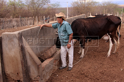 Arnoldo Lopes de Araujo near some of his cattle on his small farm near Sao Jose do Egito, in Pernambuco state. The semi-arid region known as the sertao has annual dry seasons, but 2012 is considered the worst in decades. Araujo cannot grow enough feed animals and pays for loads of cactus in order for his animals to survive. (Australfoto/Douglas Engle)