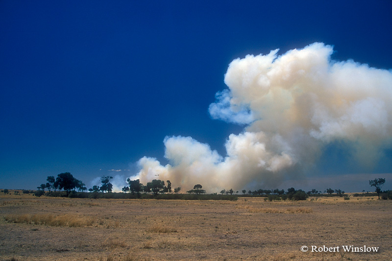 Smoke from Fires set by Maasai to clear land, Masai Mara, Kenya, Africa