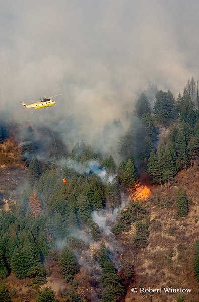 Helicopter with water bucket, Missionary Ridge Fire, 2002, San Juan National Forest near Durango, Colorado
