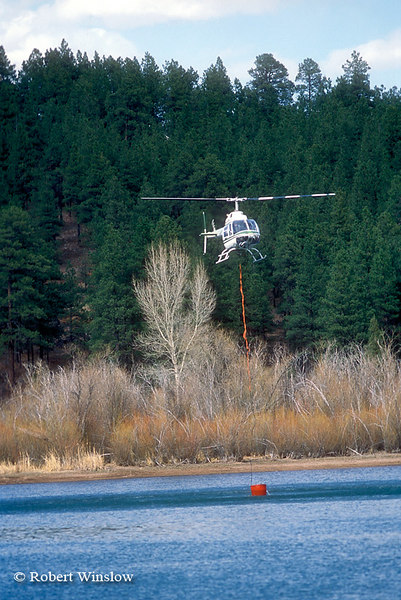 Helicopter Getting Water from a Lake to Fight a Fire, San Juan National Forest near Durango, Colorado