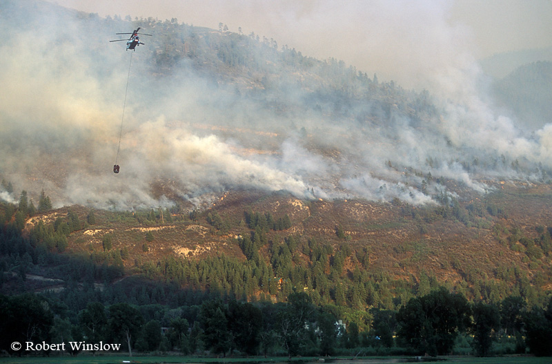 Helicopter working Missionary Ridge Fire, 2002, San Juan National Forest near Durango, Colorado