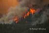 416 Fire, Durango, La Plata County, Colorado, USA, North America