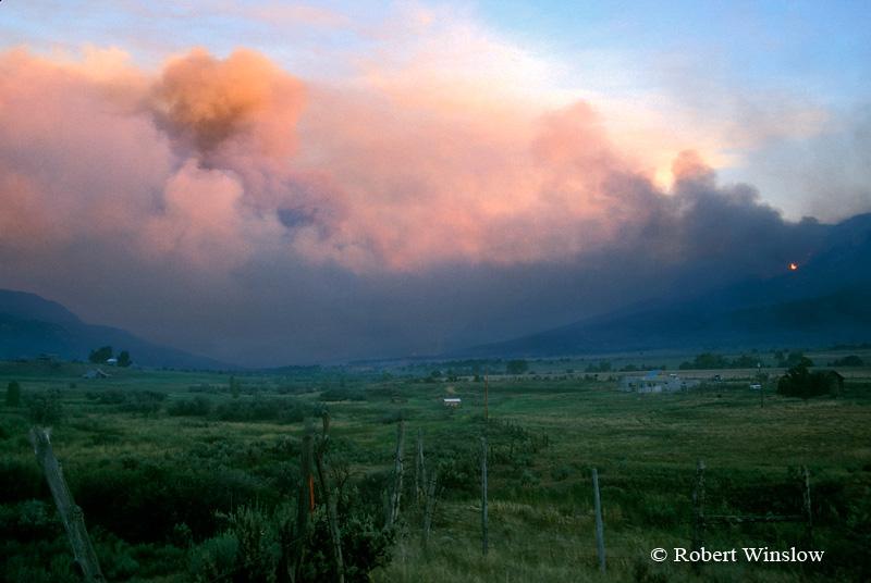 Forest Fire, Mesa Verde National Park, Colorado, July 2000
