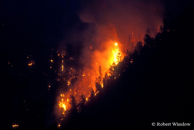 Missionary Ridge Fire, 2002, San Juan National Forest near Durango, Colorado