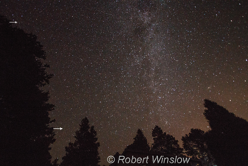 Perseids Meteor Shower, La Plata County, Colorado, USA, North America