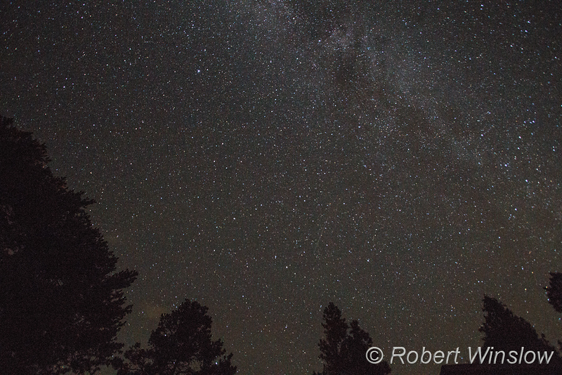 Perseids Meteor Shower, La Plata County, Colorado, USA, North America