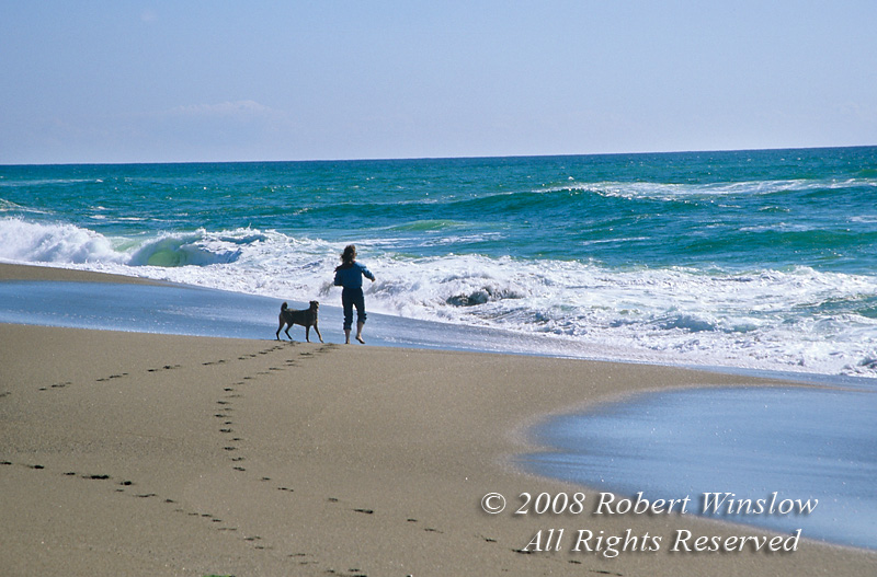Model Released, Woman and Dog on Beach, Pacific Ocean, Point Reyes, California, USA, North America