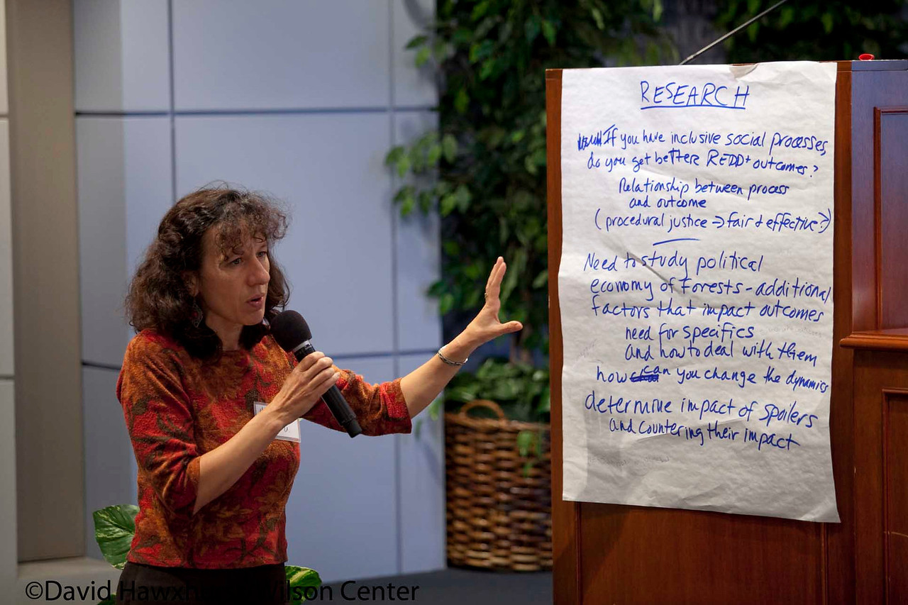 Social Dimensions of REDD: Current Practices and Challenges