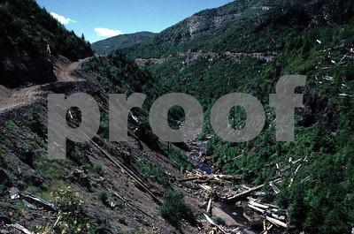Series #2: Recovery of the landscape after logging and road building on the Langdon Creek taken on July 10, 1985.