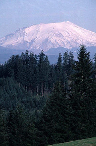 Mount St. Helens in 1986 after the May 18, 1980 eruption. View east from Schaffner Road, Castle Rock, WA.