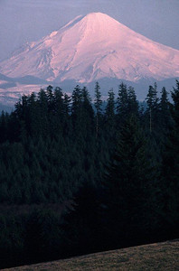 Mount St. Helens in 1976 prior to the May 18, 1980 eruption. View east from Schaffner Road, Castle Rock, WA.