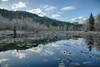 McLane Nature Trail 3376_HDR