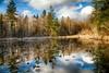 McLane Nature Trail 3370_HDR