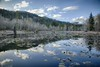 McLane Nature Trail 3379_HDR