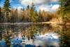 McLane Nature Trail 3373_HDR