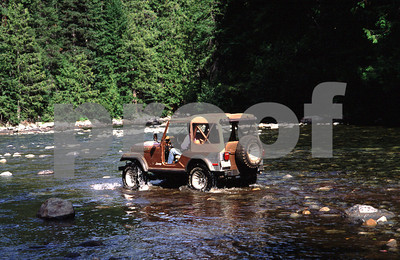 This driver received a hefty fine from state government for driving his jeep in a salmon bearing stream.