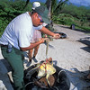 National Parks worker assists in collecting data on green sea turtle, Chelonia mydas, ( an endangered species ) at Honokohau, Kona, Hawaii ( Central Pacific Ocean )