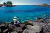 A fisherman tries his luck with a huge school of bigeye scad or akule (H), <br /> Selar crumenophthalmus, Honokohau, Hawaii ( Pacific )