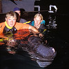 volunteers assist baby sperm whale, Physeter macrocephalus, that had stranded hous before, in a holding tank at NELHA, the ocean thermal energy conversion lab in Kona Hawaii