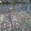 More silt running into the Little Patuxent River.<br /> <br /> 11-28-11