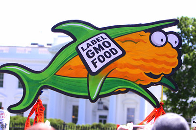 If Monsanto products are so good for you why is millions upon millions spent against labeling?