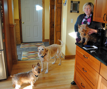 Enzo, Sgt. Pepper and Charlie