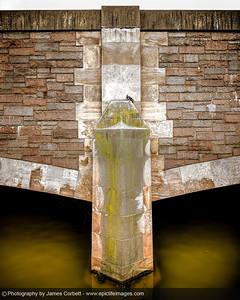 Bridge Pigeon