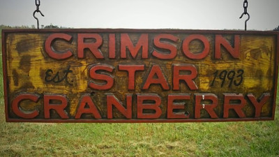 Crimson Star Cranberry Harvest 2011© Copyright m2 Photography - Michael J. Mikkelson 2011. All Rights Reserved. Images and Videos can not be used without permission.
