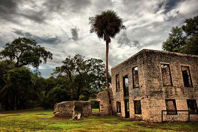 Palmetto tree overlooking the George Edwards house at the Tabby Ruins on a cloudy day on Spring Island, South Carolina  © Copyright m2 Photography - Michael J. Mikkelson 2009. All Rights Reserved. Images can not be used without permission.
