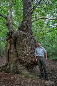 Mick Collins & Beer Belly Oak