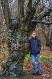 Jeremy with hornbeam pollard at Flagstaff Hill