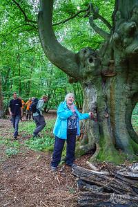 01 Naturalist (c) Marion Sidebottom