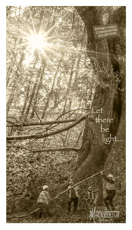 Let there be light... Marion Sidebottom, 2018, Giclee Fine Art print, 36.96 x 20.8 inches
