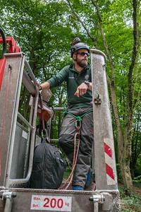 16 Conservation Arborists Pole Hill (c) Marion Sidebottom